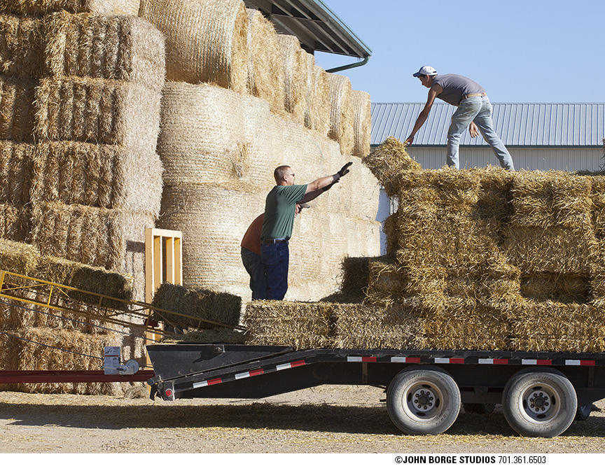 Stacking hay the old-fashioned way : agriculture : JOHN BORGE STUDIOS Fargo North Dakota Photography Advertising, Public Relations