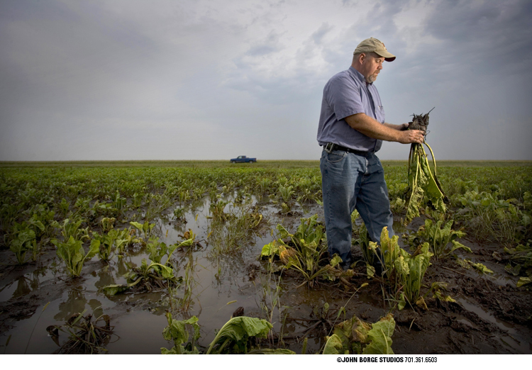 Checking field damage after heavy rains in northwestern Minnesota : agriculture : JOHN BORGE STUDIOS Fargo North Dakota Photography Advertising, Public Relations